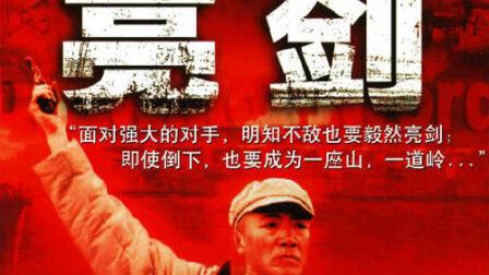 亮剑(2005)